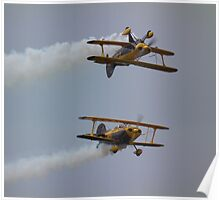 The Pitts Pair Poster