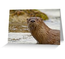 River Otter Portrait Greeting Card