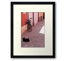 Alone in Burano Framed Print