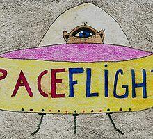 Spaceflight image. by albutross