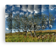 Willow on the Wall Canvas Print