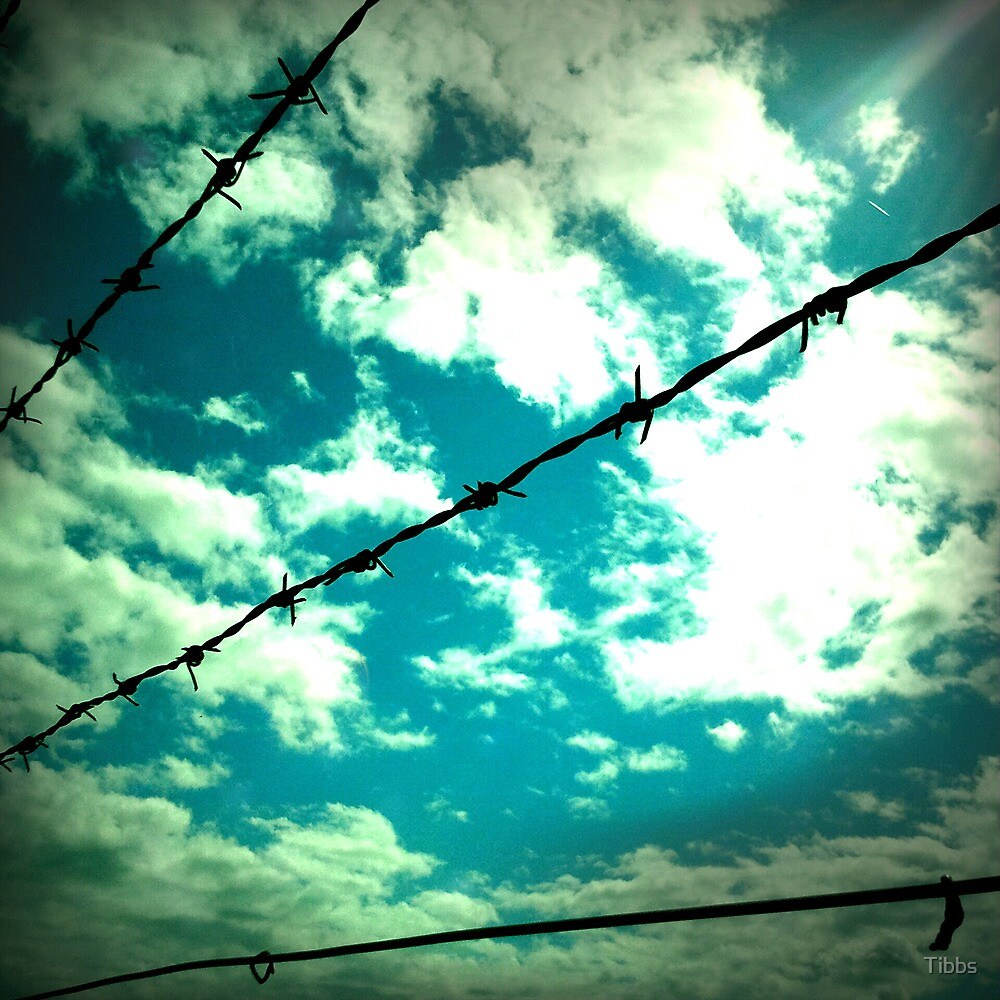Blue Sky Security (not the company!) by Tibbs