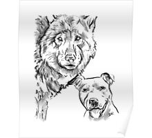 The Staffordshire Bull Terrier and the Wolf Drawing Poster