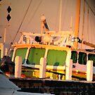 Docked at Sunset by SuziTC