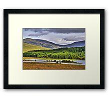 Across Loch Laggan Framed Print