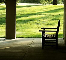 The Lonely Bench by Brian Gaynor