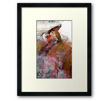 Renaissance Man Framed Print