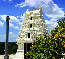 Hindu Temple in Texas by Shiva77