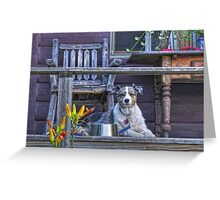 Misty on Vacation Greeting Card