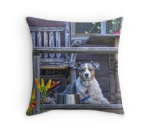 Misty on Vacation Throw Pillow