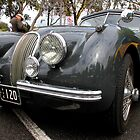 Jaguar XK 120, 1948 to 1954 #2  by Carole-Anne