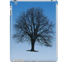 Crown Jewel iPad Case/Skin