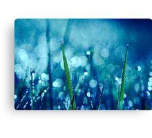 réveil 03 Canvas Print
