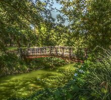 UC Davis Arboretum Bridge by JT Valine