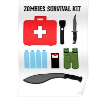 Zombie survival kit Poster