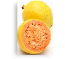 Guava fruits Canvas Print
