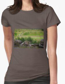 Postbridge Roadside Womens Fitted T-Shirt