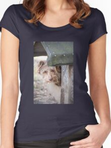 bad dog head jut out of kennel  Women's Fitted Scoop T-Shirt
