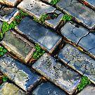 Goodbye Yellow Brick Road - Hello Blue Cobblestone Road ©  by © Hany G. Jadaa © Prince John Photography