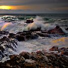 Lights Reflections ~ Oregon Coast ~ by Charles & Patricia   Harkins ~ Picture Oregon