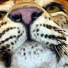 Jaguar by © Loree McComb