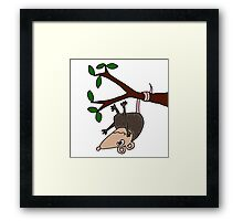 Hilarious Possum Hanging from Tree Framed Print