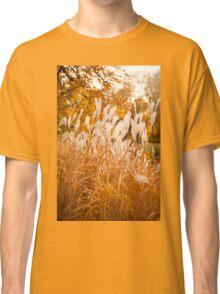 Miscanthus ornamental grass in park autumn  Classic T-Shirt