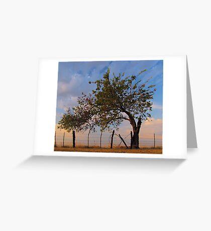 Western Sunrise - Sherman, Texas, USA Greeting Card