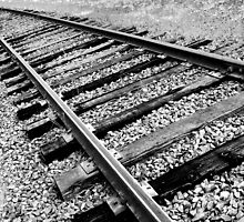 A Track Less Traveled by Jennifer Hulbert-Hortman