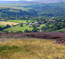 Beck Hole from Goathland Moor by Tom Curtis