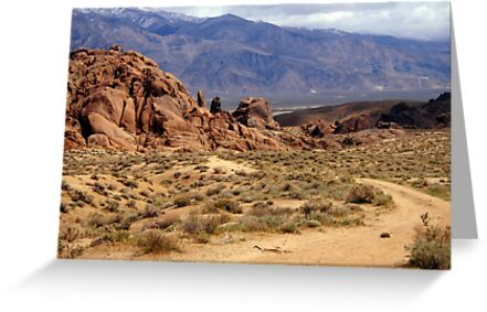 Dirt Road Traveling Dedicated to All Dirt Road Lovers by marilyn diaz