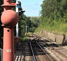 Rail Track at Goathland by Tom Curtis