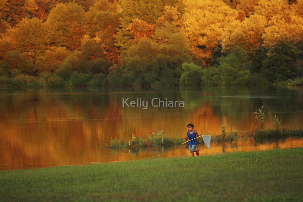 Catching Dragonflies... by Kelly Chiara