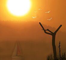 July Morning by arvyart