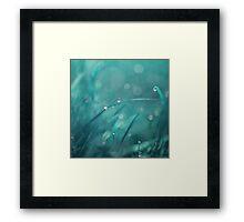 morning droplets Framed Print