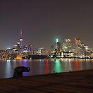 Toronto Skyline at night by thomasrichter