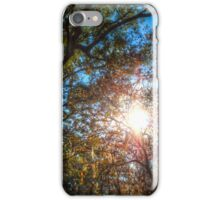 The Light in the Trees iPhone Case/Skin