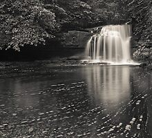West Burton Falls by Tim Haynes