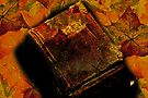Still Life Books And  Autumn Leaves by Evita