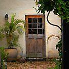 Old Cedar Door  by triciamary