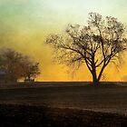 Daybreak on the Farm by Brian Gaynor
