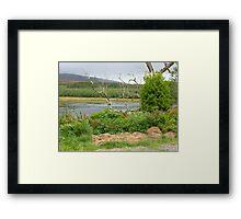 Over the lake Framed Print