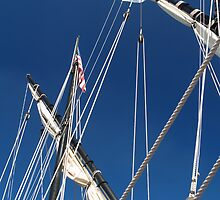 Masts of the Nina by BarbL