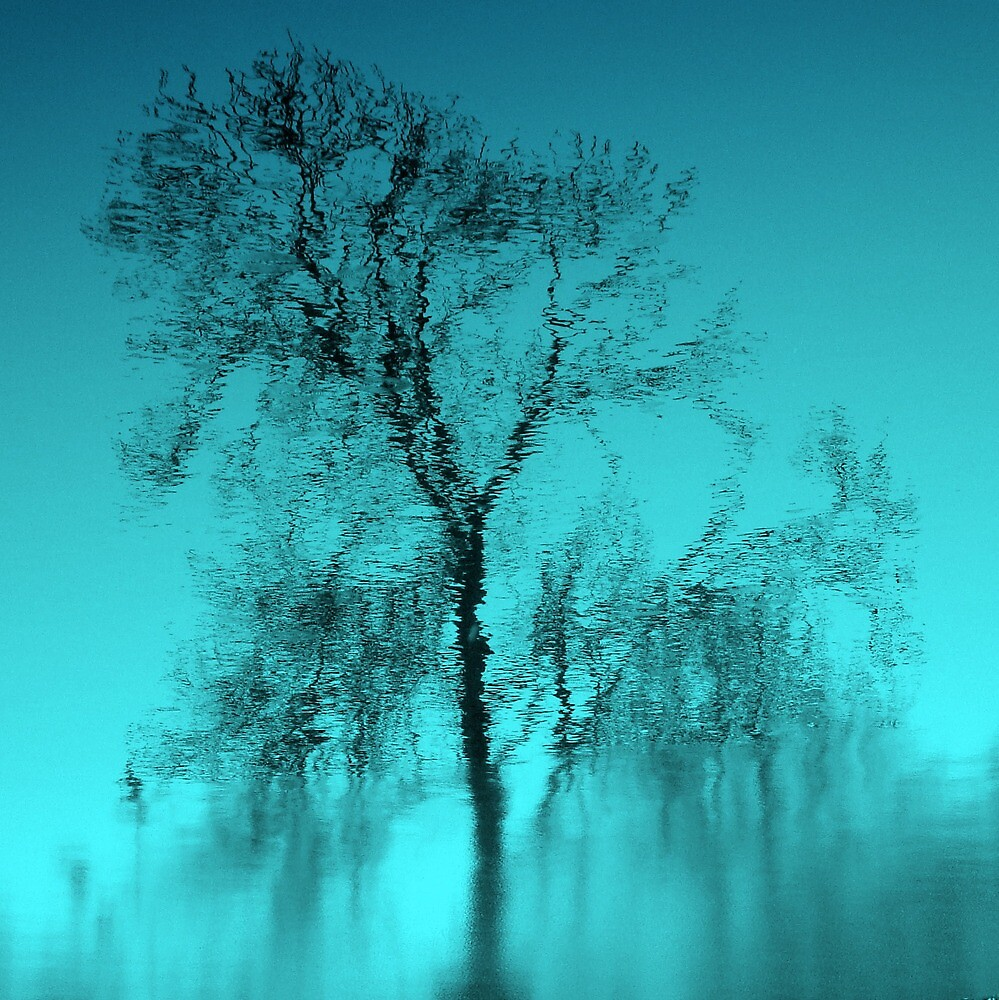 Feeling Blue.. by Kate Towers IPA