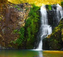 Umtanum Falls by Mikhail Lenitsyn