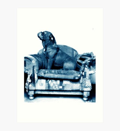 Blue Couch Art Print