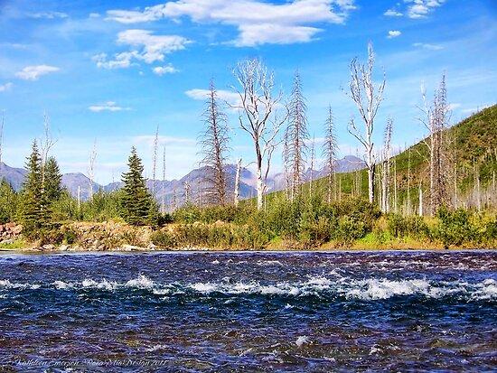 View into Glacier National Park (Montana, USA) by rocamiadesign