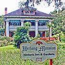 Historic Inn  by AuntDot