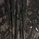 thin dust by chookshedflambe