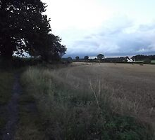260811 - Day trip through farmer's fields, Kingswood, Surrey, UK by paulramnora